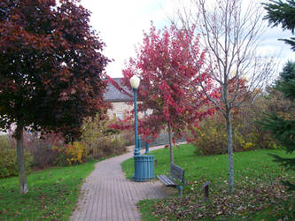 Park In Brockville by scrawnyfella