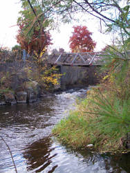 Old Creek In Brockville by scrawnyfella