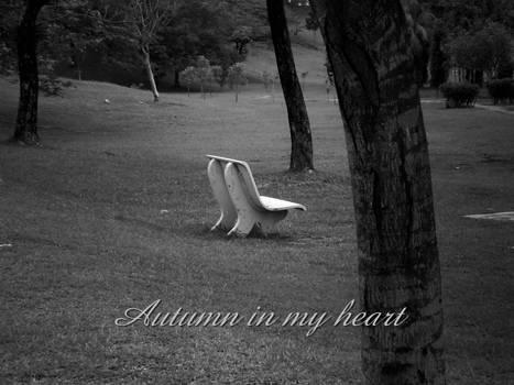 Autumn in my heart.
