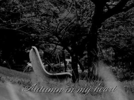 Autumn in my heart 2