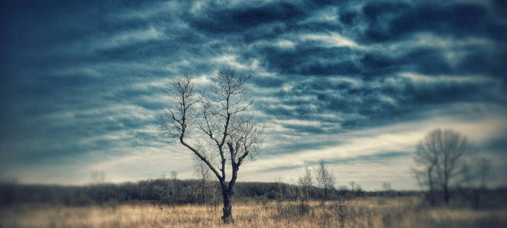 Crazy Weather 4 by ShaunAnarchy