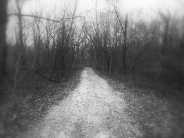 The Old Trail 2 by ShaunAnarchy