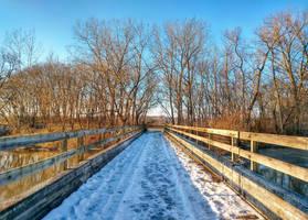 Frozen Bridge by ShaunAnarchy