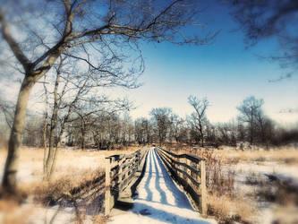 The Bridge by ShaunAnarchy