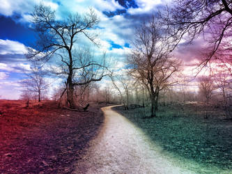 Trail Of Colors by ShaunAnarchy