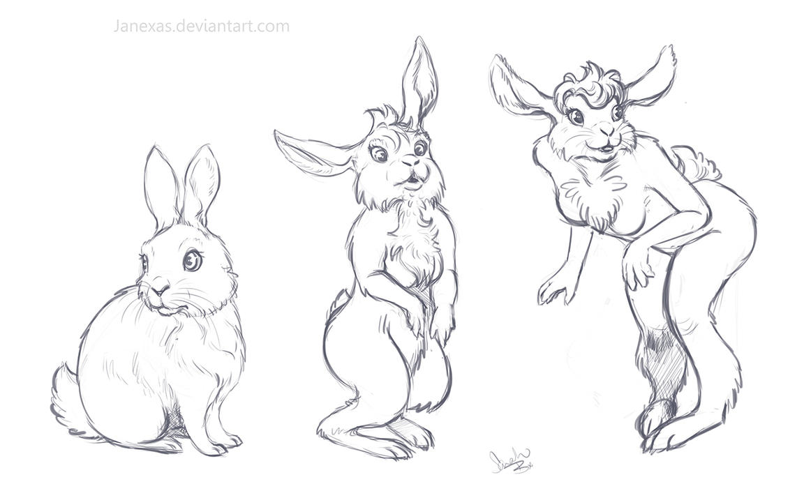 3 stage bunny anthro commission by janexas on deviantart