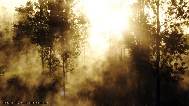 TERRAGEN: Foggy Morning