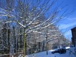 Ice cold weather VI