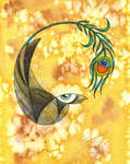 Aesop - The Vain Crow II by ffufi