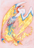 Phoenix by ffufi