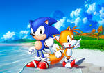 Sonic and Tails in coast of Emerald Hill