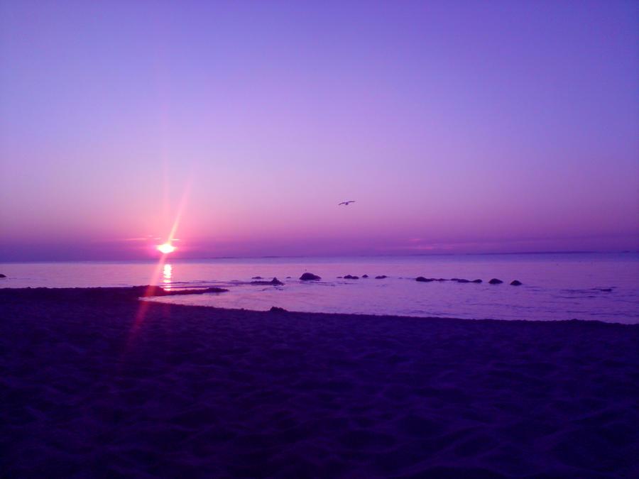 Zalazak sunca-Nebo - Page 2 Pure___4___by_HolladeWaldfee