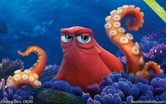 Finding Dory 24 BestMovieWalls By
