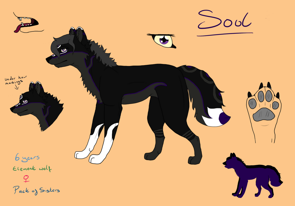 Soul Ref by BlueSkyWolf