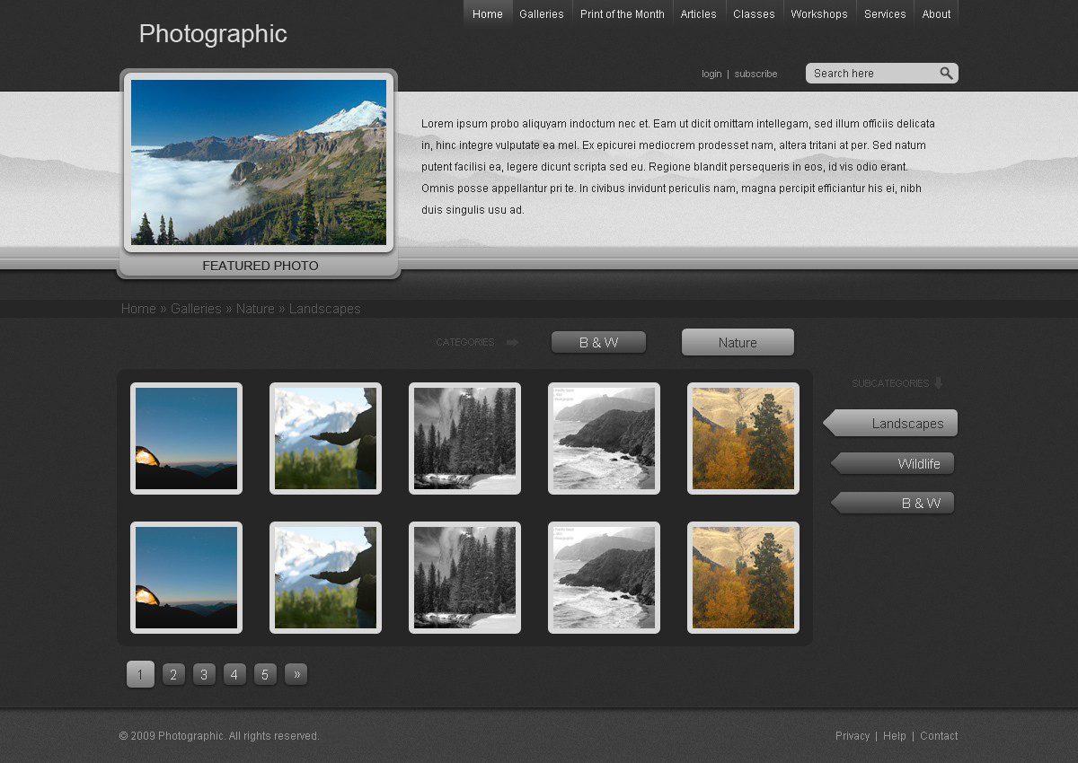 Photo Gallery Website by bographics on DeviantArt
