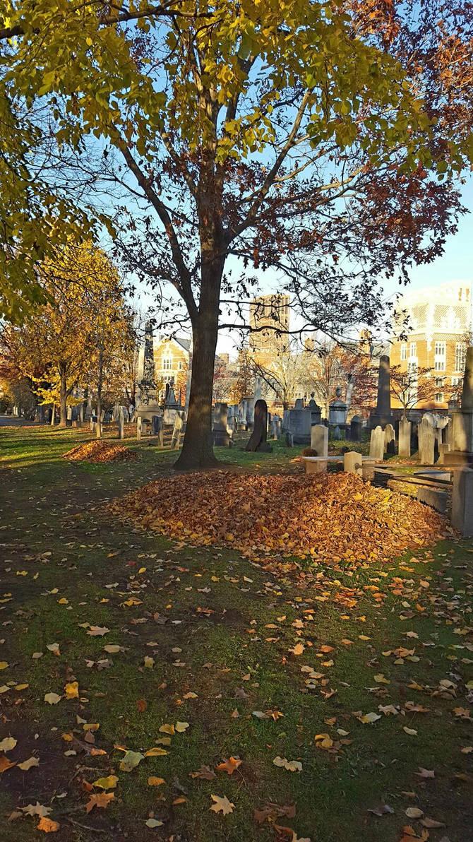Grove St. in Autumn by GUDRUN355