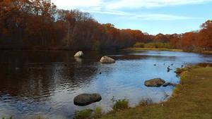 Wooster Pond 3