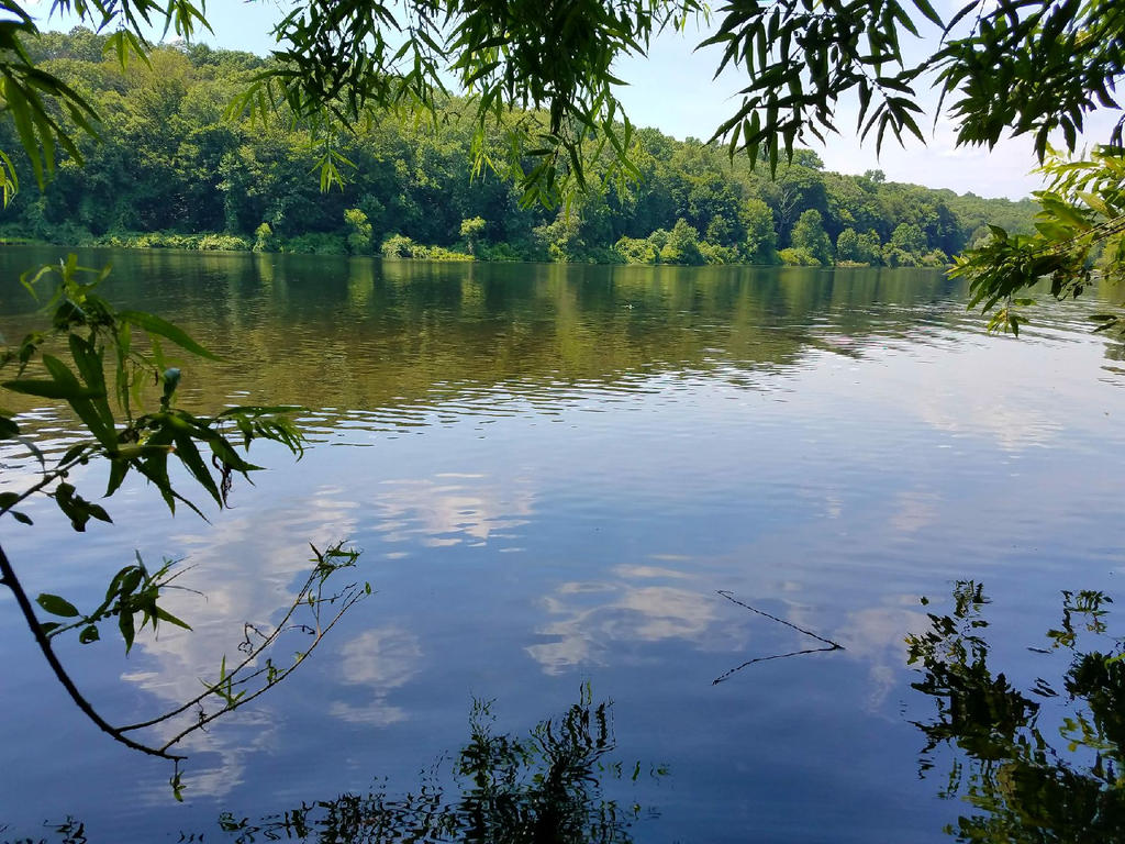 mohegan lake chatrooms White plains, plains, bedford bedford hills, hills, mohegan mohegan lake, lake  there are chat rooms and question boards for absolutely any topic you can think.