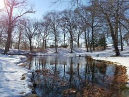 Longbrook Park by GUDRUN355