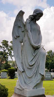 Nadia's Angel