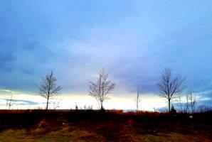 Three by GUDRUN355