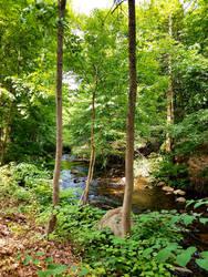 River at Sleepy Hollow by GUDRUN355