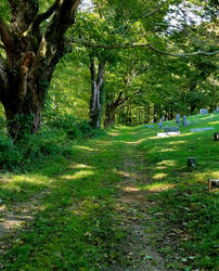 Path to Hookman Cemetery
