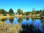 Pond at Elm Grove