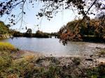Branford River in September