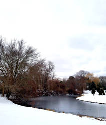 Snowy Duck River