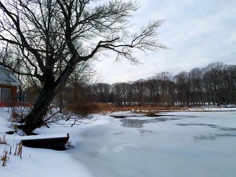 Peck's Mill Pond