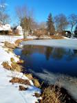 February Pond