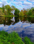 Reflections in May