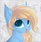 Pony portriat