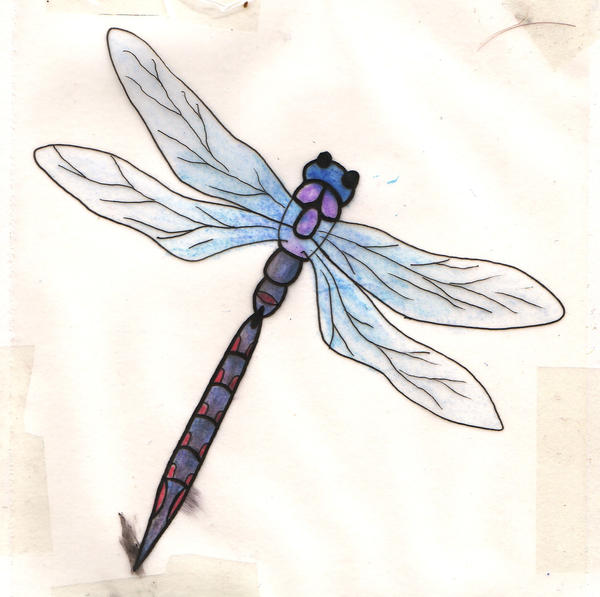 Blue and purple Dragonfly tatt - dragonfly tattoo
