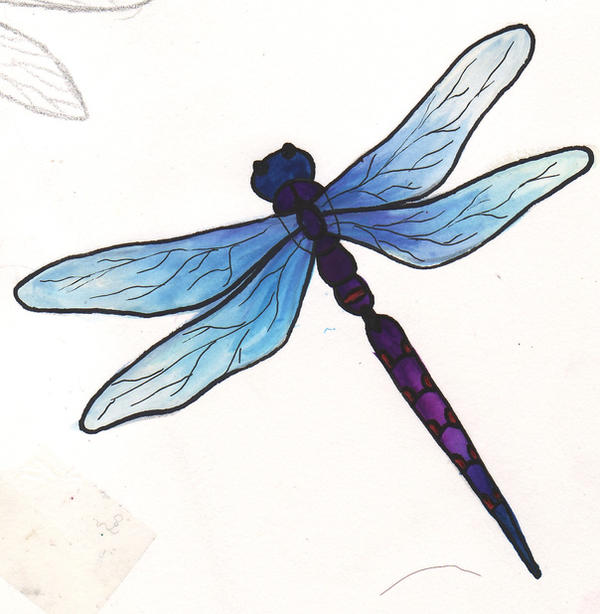 blue and purple dragonfly tat2 by happyhippybassist on deviantart. Black Bedroom Furniture Sets. Home Design Ideas