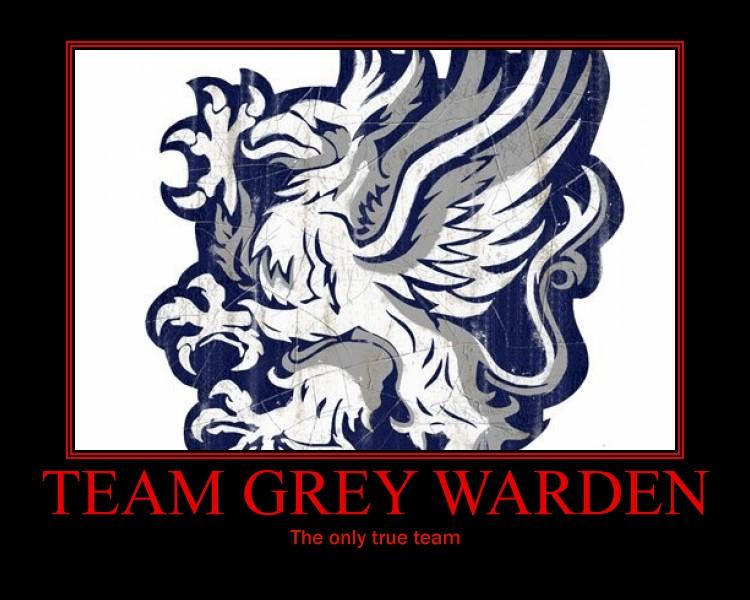 Team Grey Warden By Ichogo On Deviantart
