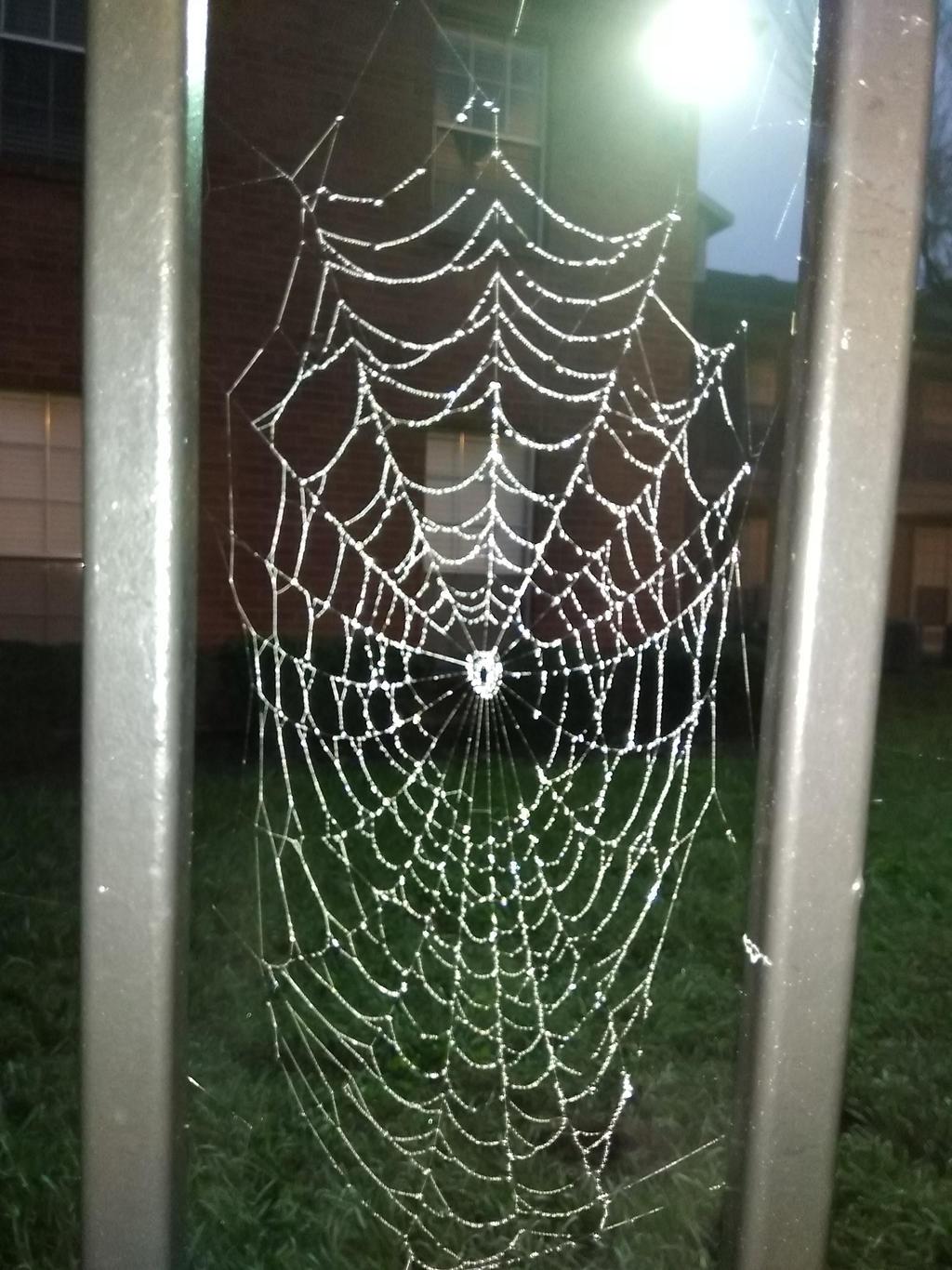 Web 3.