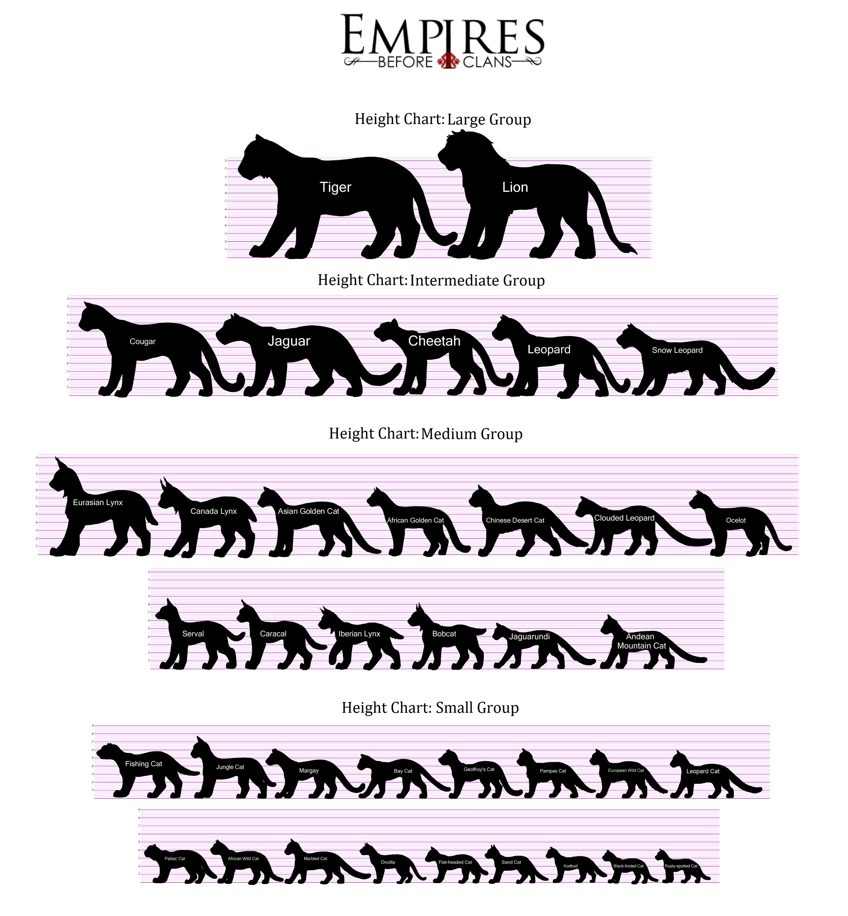 Cat Height Chart Metric By Ebc Admins