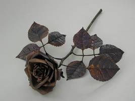 copper rose by knivesandroses