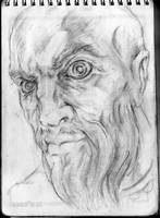 Portrait of a berserker by stabbedwithacarrot