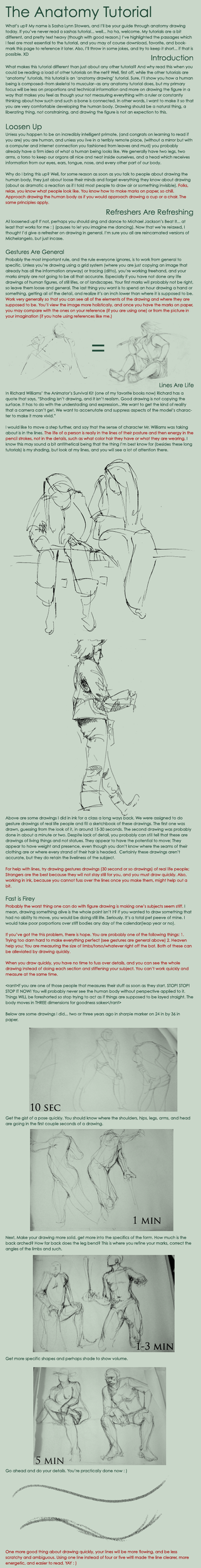 mini anatomy tutorial by sashas