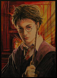 Harry by DavidDeb by PortraitPencilArt