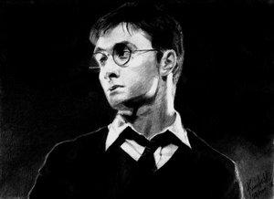 H. Potter-Revenge: kimberlykat by PortraitPencilArt