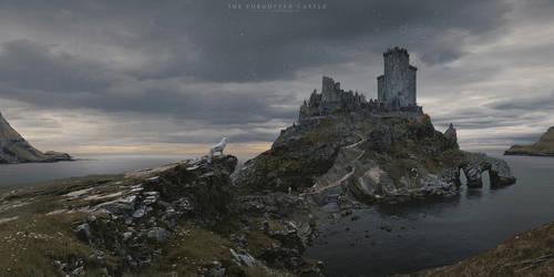 The Forgotten Castle