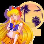 FA_Sailor Venus