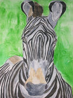 Watercolor Zebra by artfromtheheart92