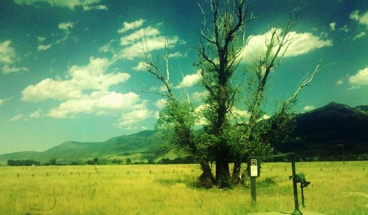 Untouched by rainydaykid575