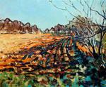 Field in early Autumn Light