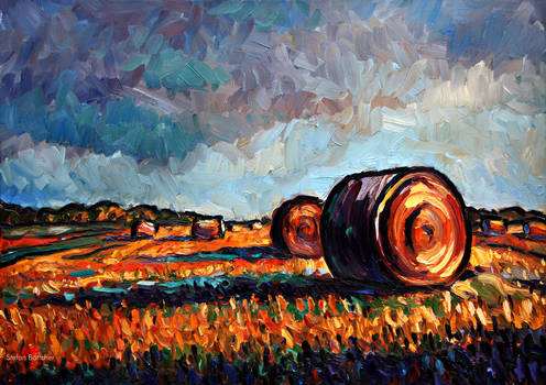 Fields with cylindrical Bales of Straw at Sundown